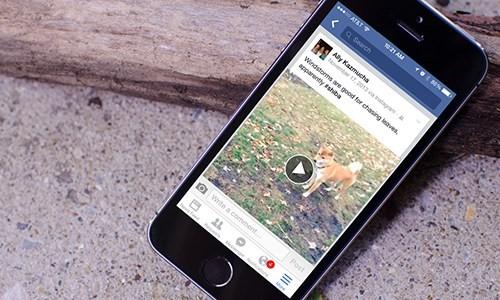 Áp dụng ngay 5 cách tăng thời lượng pin iPhone dùng iOS 11