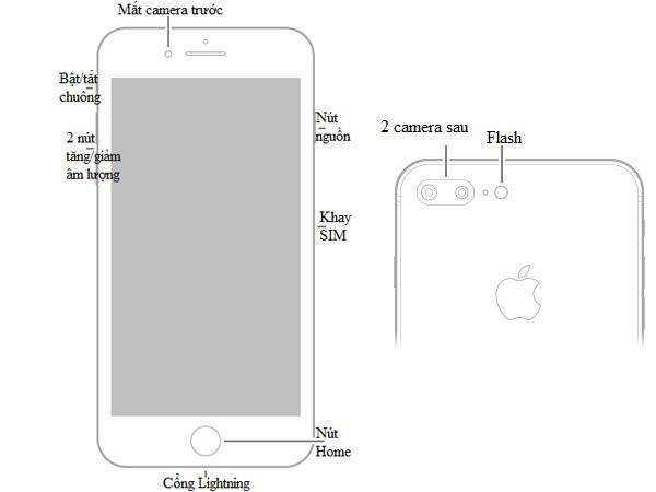 """""""Cẩm nang"""" hướng dẫn sử dụng iPhone 8 và iPhone 8 Plus"""
