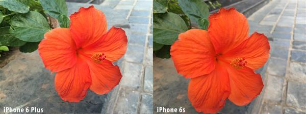 Sự khác nhau giữa hai bức ảnh được chụp từ iPhone 6S Plus 32GB và iPhone