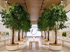 Khai trương Apple Store rộng gần 5000 mét vuông tại Dubai