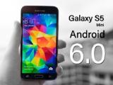 Galaxy S5 mini bất ngờ nhận được cập nhật hệ điều hành Android 6.0